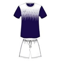 Custom Made Lyon Football Kit